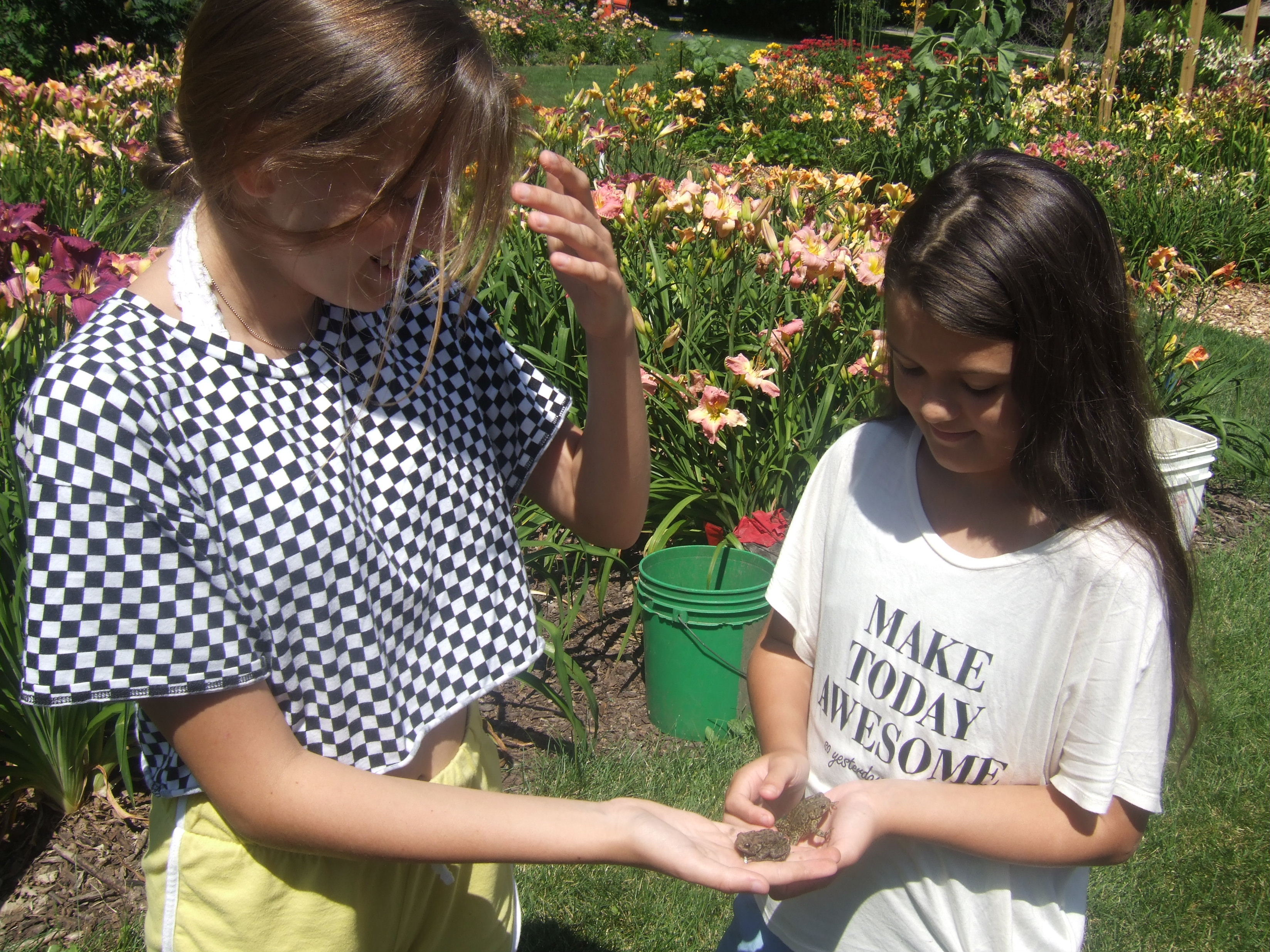 My granddaughters are toad friendly